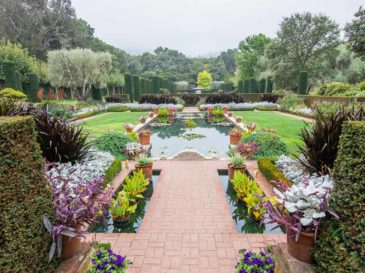 filoli gardens pond